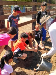 Planting Seeds at Sikes Adobe