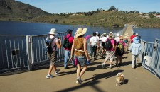 Hikers cross the newly resurfaced 'ribbon bridge' on their way to Bernardo Mountain. ~~Photographed 6 February 2011 while participating in a San Dieguito River Park Conservancy sponsored hike up Bernardo Mountain which was led by Leslie Woollenweber.